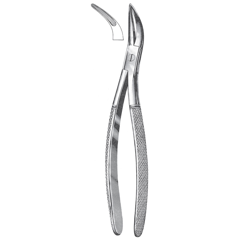 Wisdom Teeth Extracting Forceps Universal Style Curved Gavin Industries