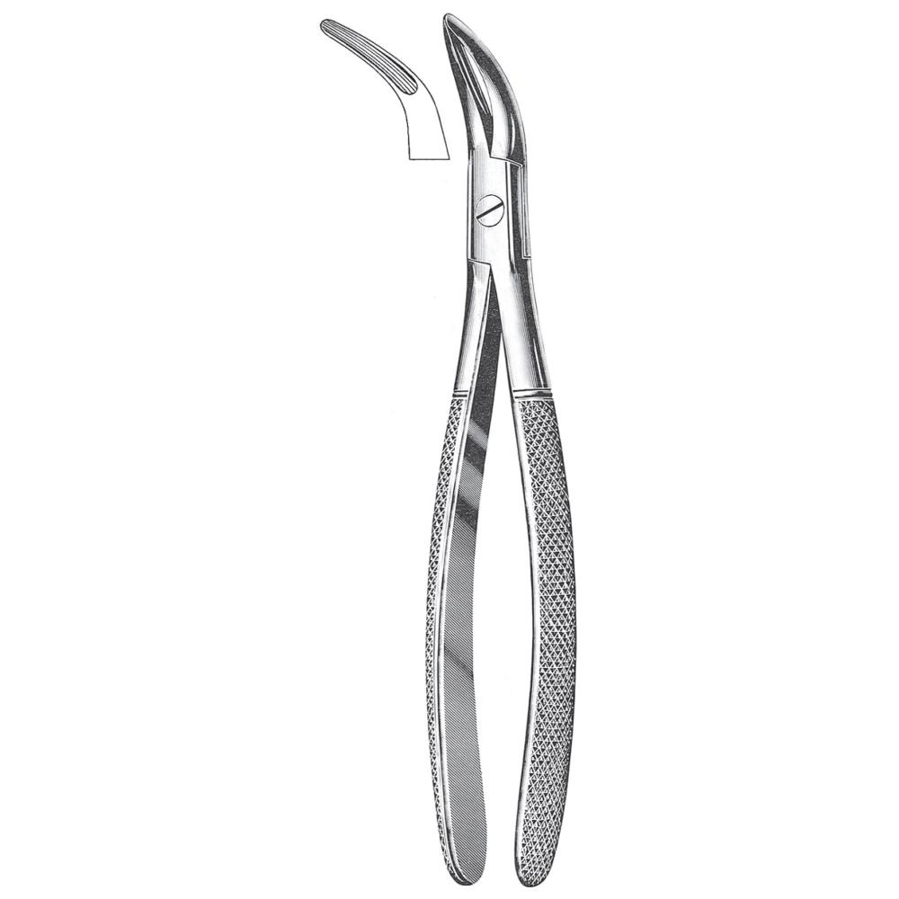 Teeth Extracting Forceps